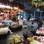 即時熱門文章:台北內湖花市乾燥花|桐林乾燥花 (乾燥花價格、便宜乾燥花台北推薦)